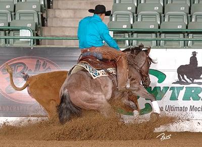2015 NRCHA Stallion Stakes