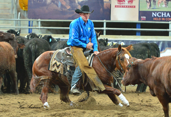 2015 Australian NCHA Futurity Open Champion