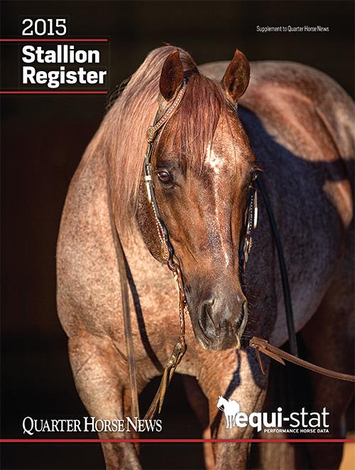 stallionregcover