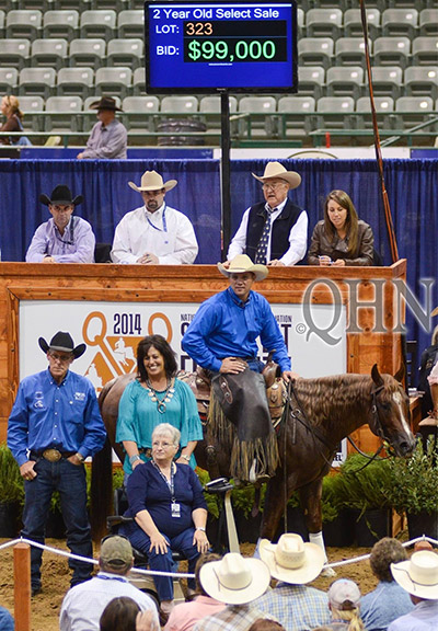 Stylish Metallic tops 2014 NRCHA 2 Year-Old Select Sale
