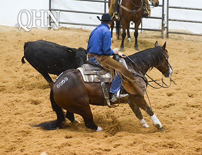 Show Horses Sell Well at NCHA Futurity Cutting Horse Sale