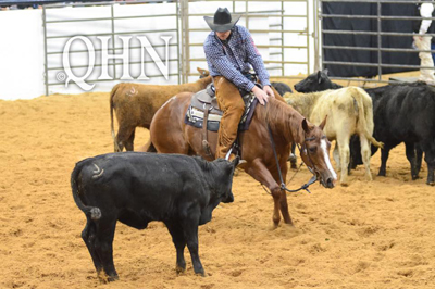 Metallic Quintan 014 Tops Session I of NCHA Futurity 2-Year-Old Sale