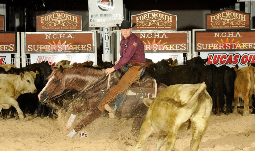 Metallic Rebel Unofficially Clinches NCHA Open Horse of the Year