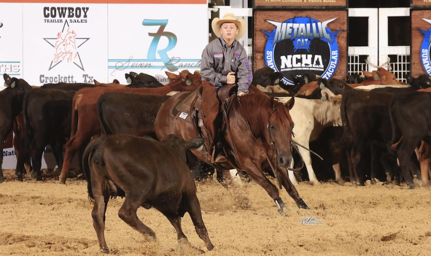 Will Rogers Wonders! Cody Gann & Hevvy Metal Win Junior Scholarship Cutting