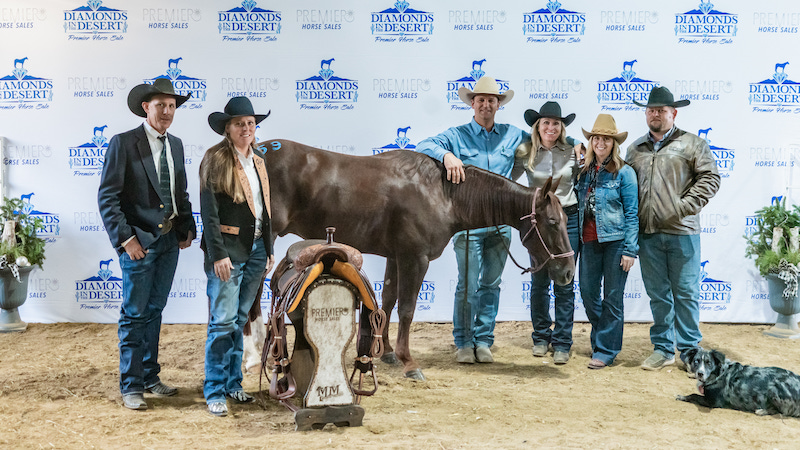 Six Figure Metallic Cat Breaks Diamonds In The Desert Sale Record