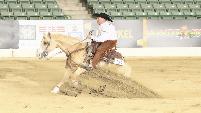 SJR Metallic Beau Makes Up for Lost Time in Reno Open Bridle