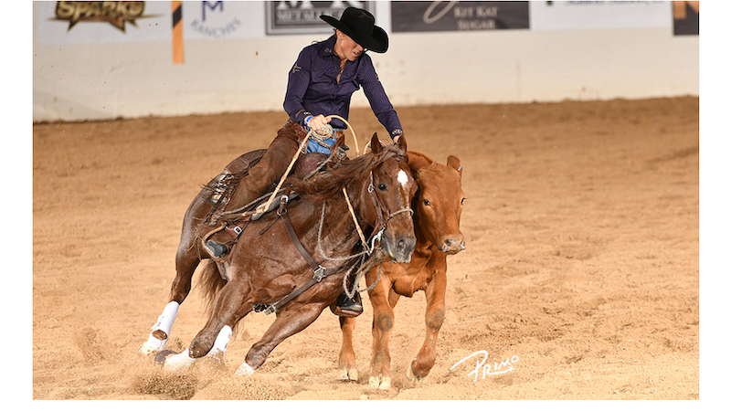 Im So Stunning & Erin Taormino Strike First at NRCHA Stallion Stakes