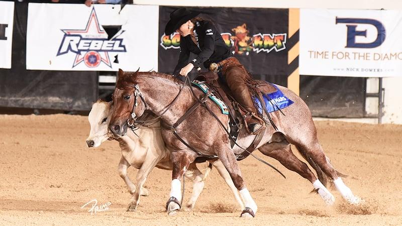 Erin Taormino & Hazardouz Material Win NRCHA Stallion Stakes